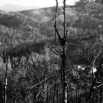 Knysna-fires__2017-10-01__03